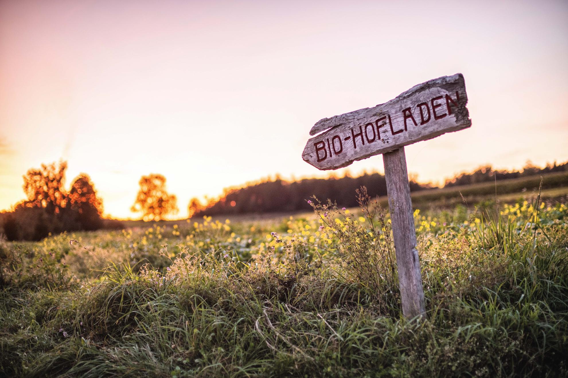 Bio-Hof Glück | eigener Acker