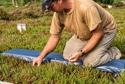 Effner Cranberry Plantage Schoenram Dr Michael Bannert 3730