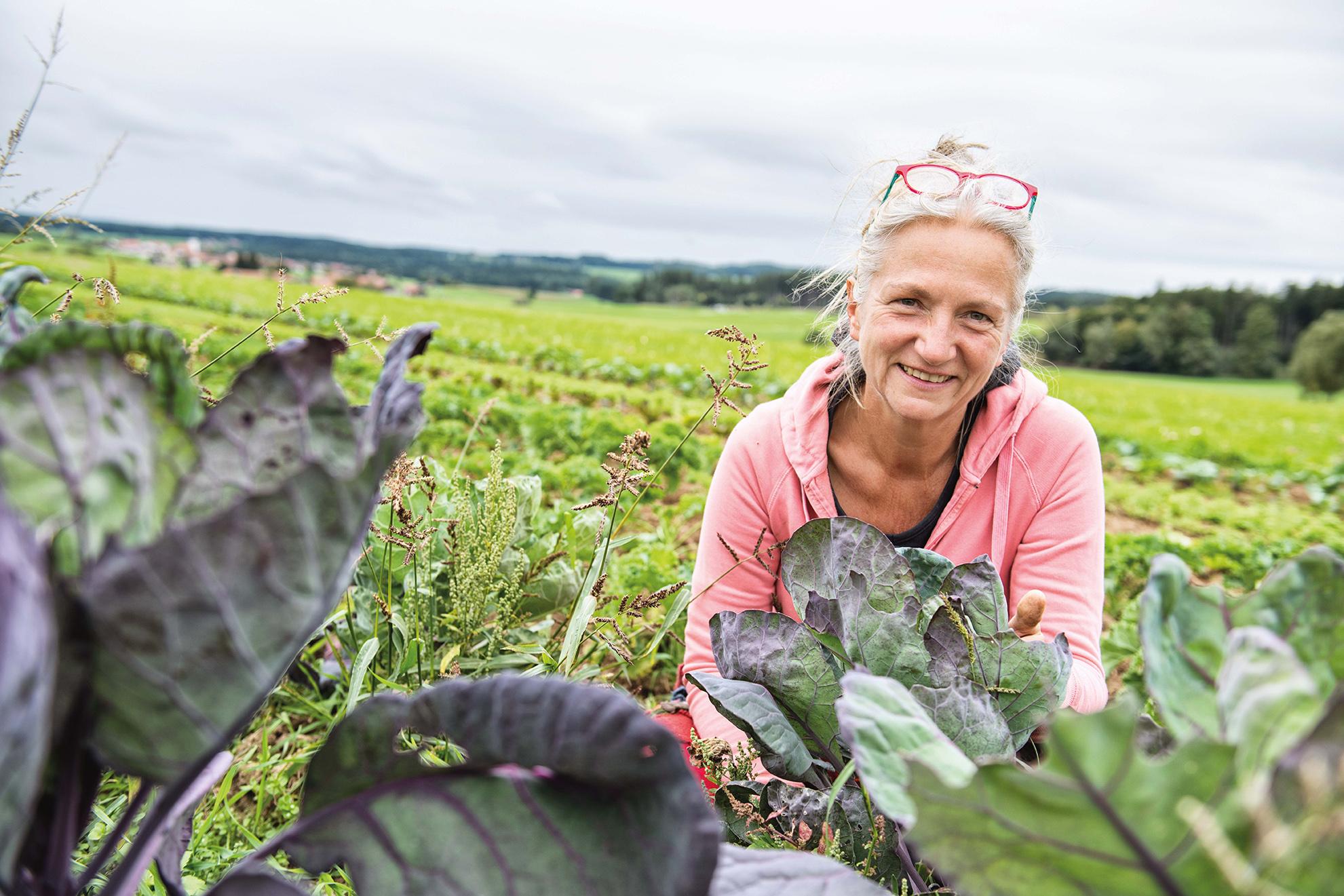 SoLaWi Chiemgau   Bio Landwirtschaft Bayern   Kristine Rühl